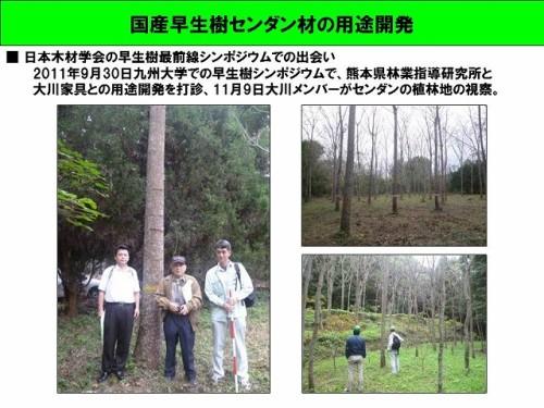 国産早生樹センダン材の用途開発(熊本県林業指導研究所)