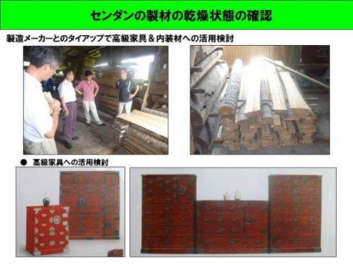 センダンの製材の乾燥状態の確認